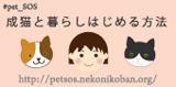 成猫と暮らしはじめる方法 #pet_SOS