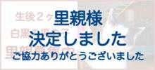 Shirokuro_2